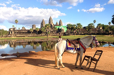 INT-C-FT02 4 Days Cambodia Family Tour with Horse Riding