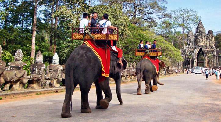 Cambodia Transportation: Elephant Riding in the Northeastern part of Cambodia